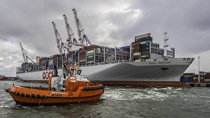 A new quarterly record at the Port of Gdansk