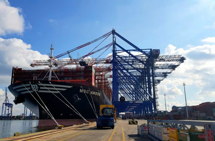 MSC Ambra for the first time in DCT Gdansk