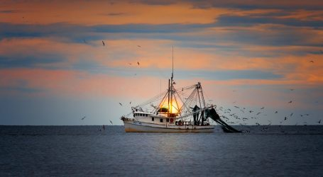 Commission adopts strategic guidelines for sustainable and competitive EU aquaculture